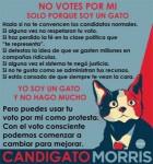candigato-morris-279x300